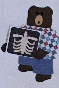 X for x-ray, Bear holding an x-ray of a ribcage